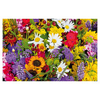 Greeting Card Flowers