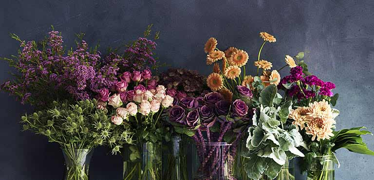 Wide Flower Selection