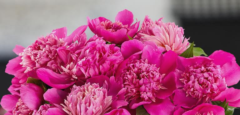 Pinkes Bouquet